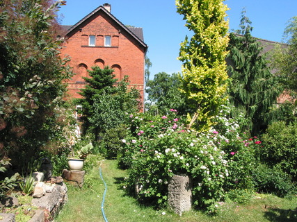 Gartenansicht (Foto: saxdorf.de)
